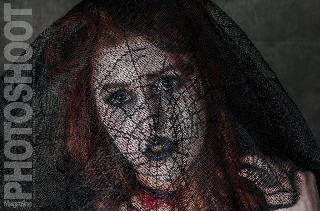 Black Widow Spider  - Halloween